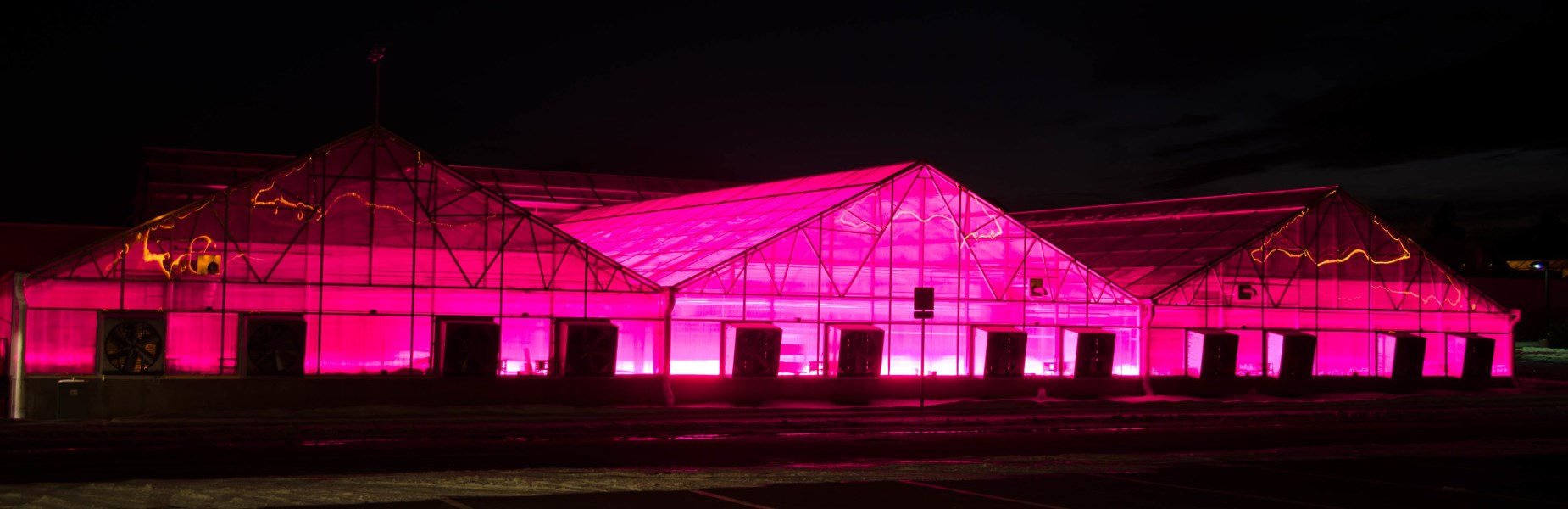 FIG. 1 – Horticultural lighting in greenhouses. (Source: Colorado State University)