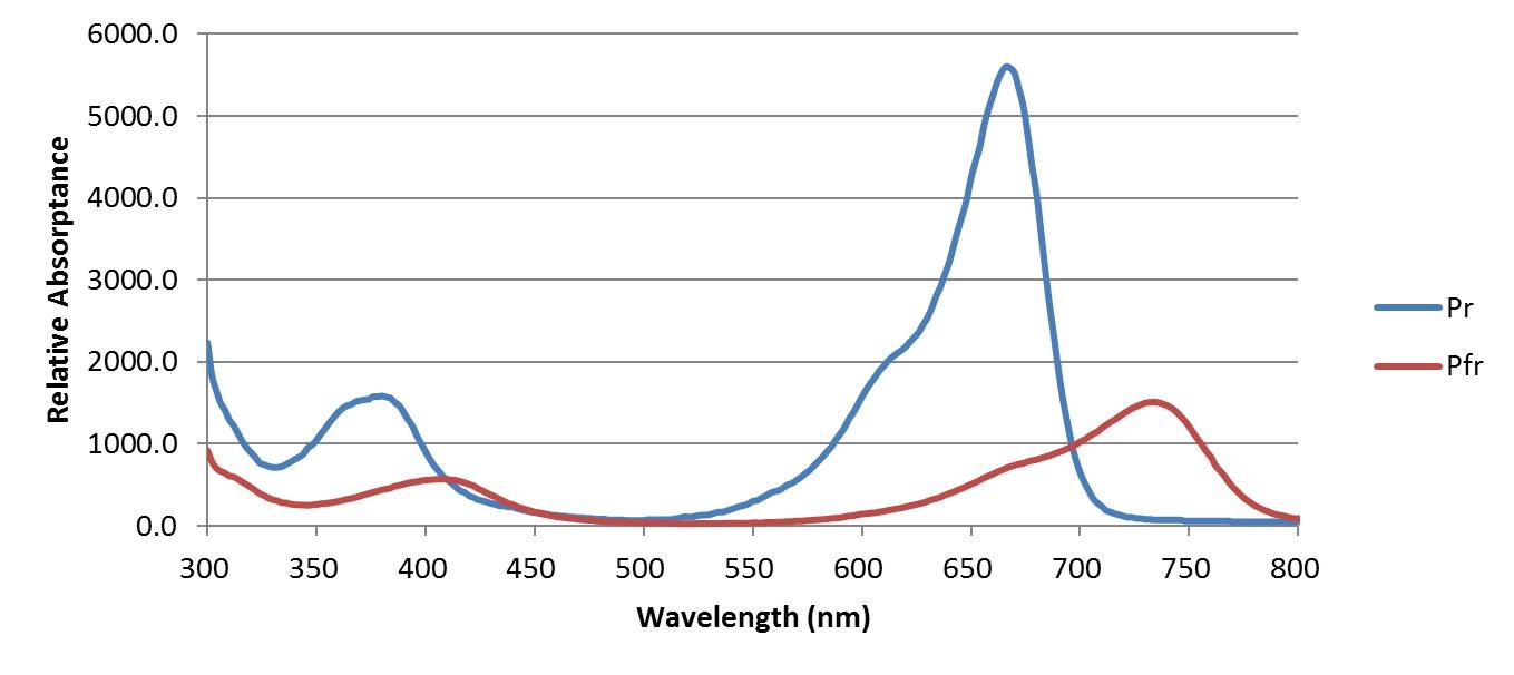 FIG. 2 – Phytochrome spectral absorptance. (Source: Sager et al. 1988)